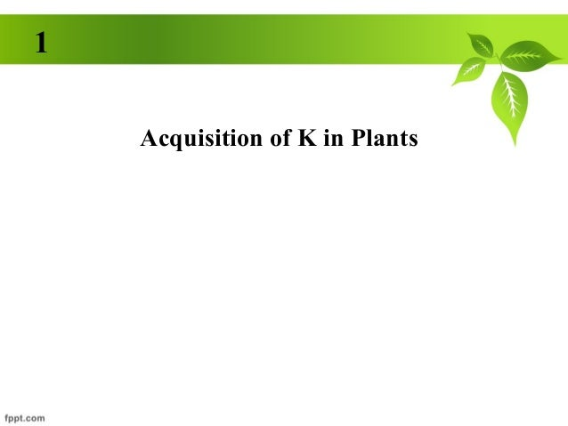 1    Acquisition of K in Plants