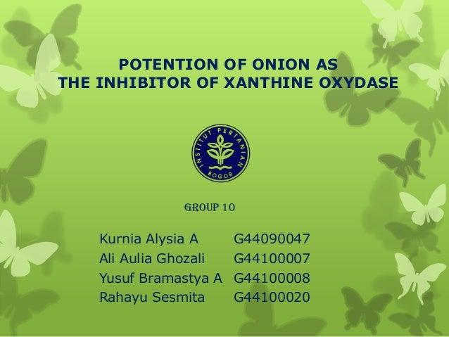 POTENTION OF ONION AS THE INHIBITOR OF XANTHINE OXYDASE Kurnia Alysia A G44090047 Ali Aulia Ghozali G44100007 Yusuf Bramas...