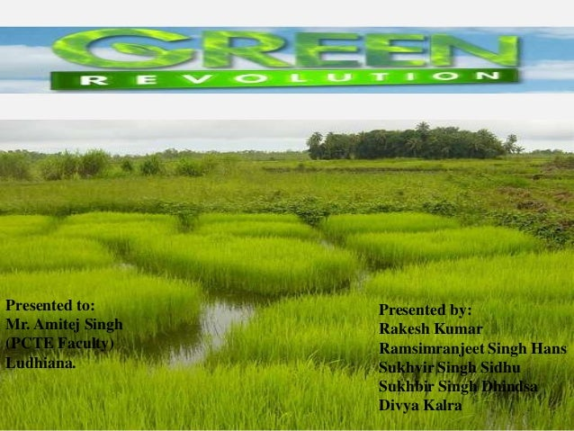 impact of green revolution on india The impact of green revolution on india introduction in the backdrop of the food crisis that gripped india in the 1960s and 1970s, the government of india initiated.