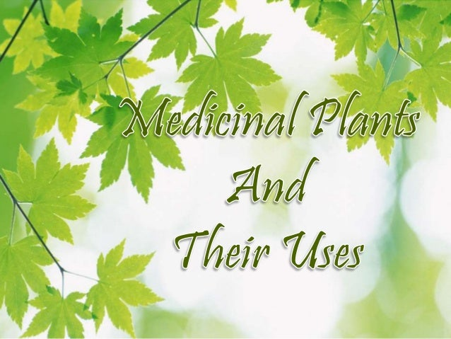 Ppt on herbal products