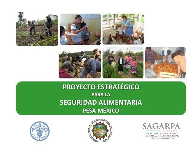 Programa Especial de Seguridad Alimentaria.