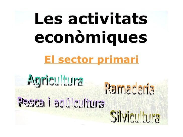 Ppt sector primari