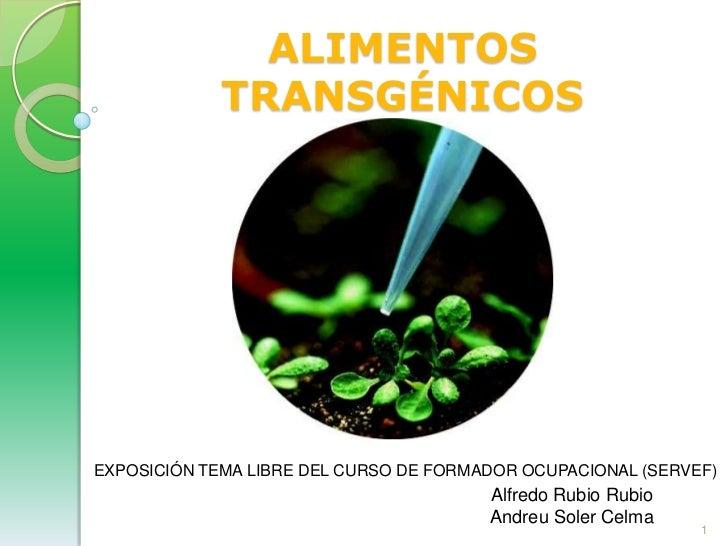 ALIMENTOS TRANSGÉNICOS<br />EXPOSICIÓN TEMA LIBRE DEL CURSO DE FORMADOR OCUPACIONAL (SERVEF)<br />Alfredo Rubio Rubio<br /...