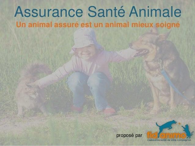 Assurance Santé Animale proposé par Un animal assuré est un animal mieux soigné
