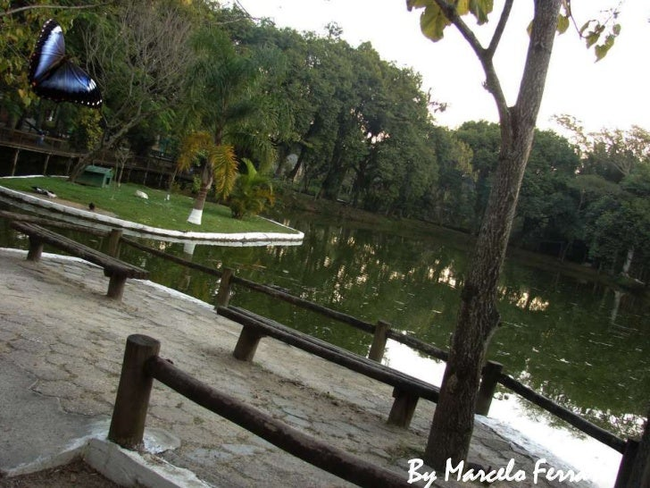 Parque Ecológico Corrego Grande
