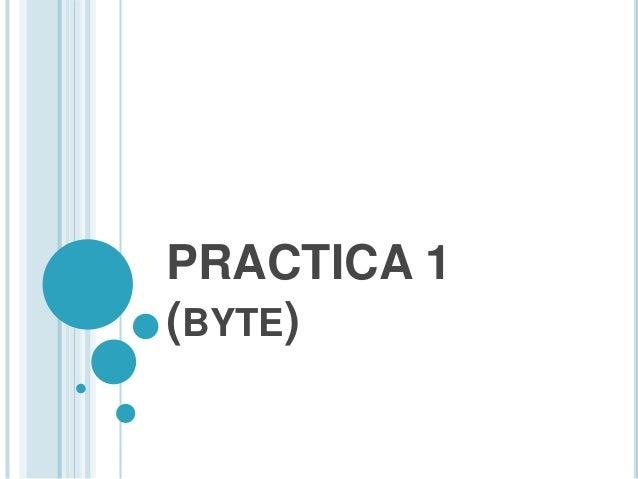 PRACTICA 1 (BYTE)