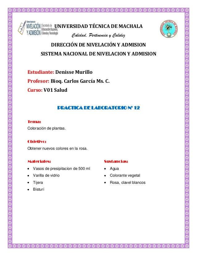 UNIVERSIDAD TÉCNICA DE MACHALA Calidad, Pertinencia y Calidez DIRECCIÓN DE NIVELACIÓN Y ADMISION SISTEMA NACIONAL DE NIVEL...