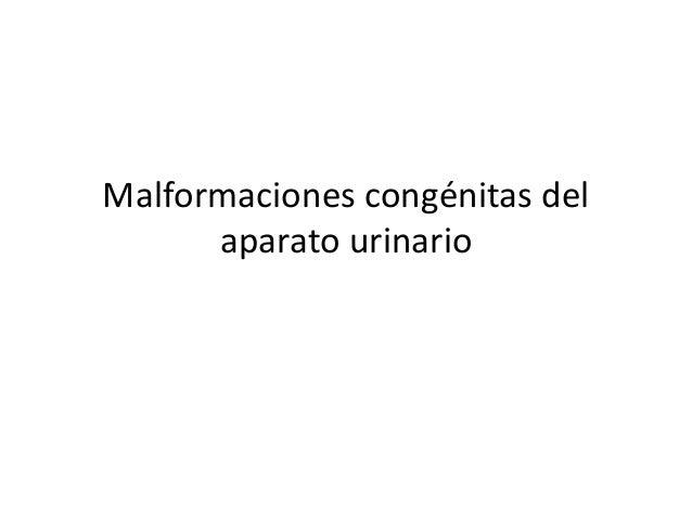 Malformaciones congénitas del  aparato urinario