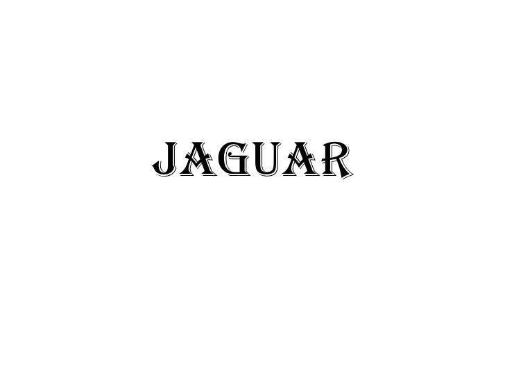 JAGUAR<br />