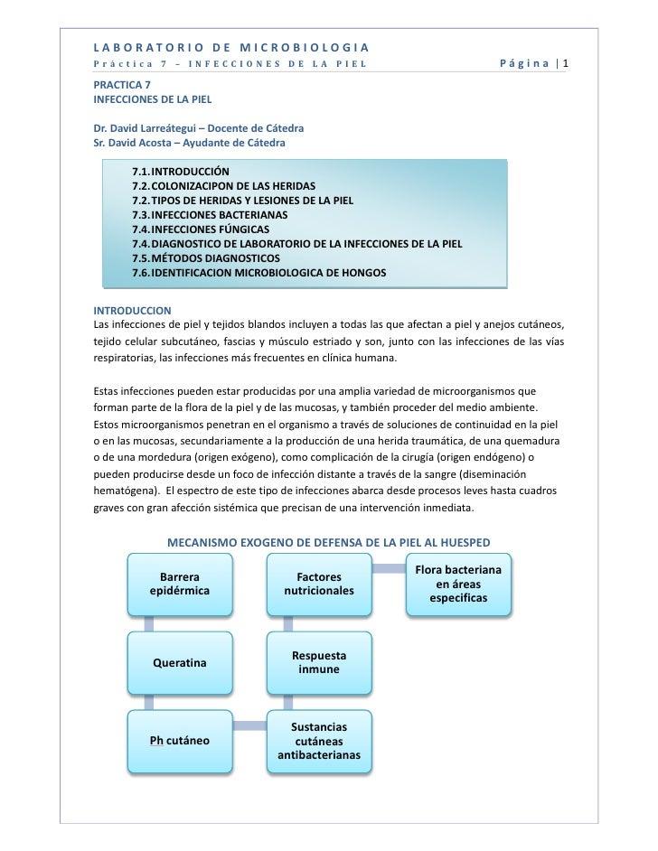 L A B O R ATO R I O D E M I C R O B I O L O G I APráctica 7 – INFECCIONES DE LA PIEL                                      ...