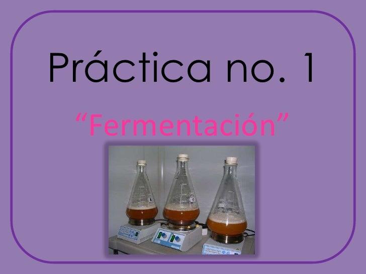 """Práctica no. 1<br />""""Fermentación""""<br />"""