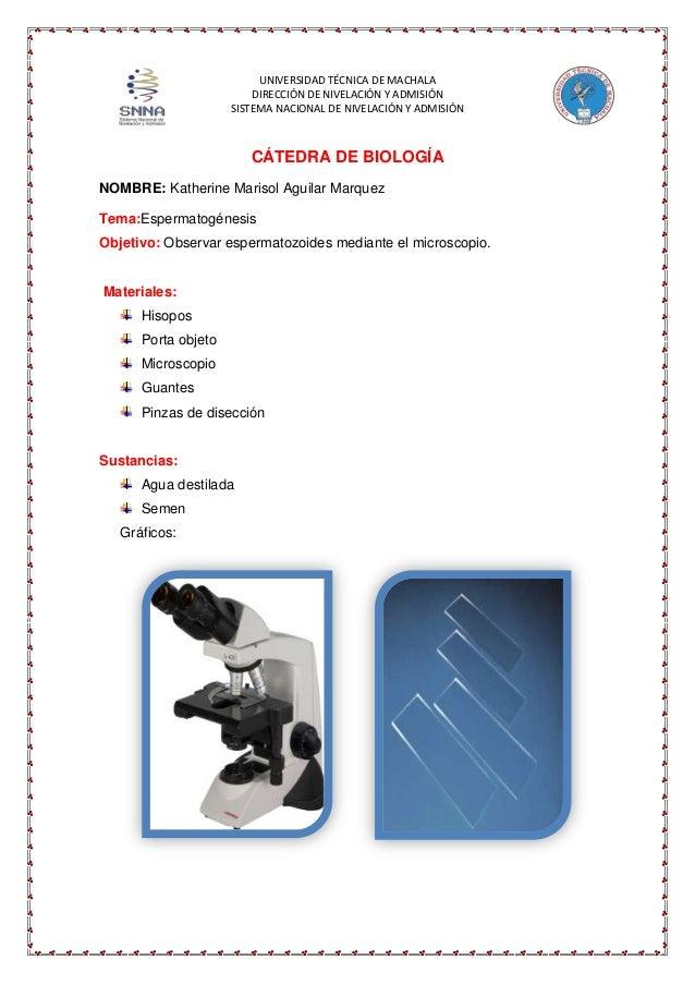UNIVERSIDAD TÉCNICA DE MACHALA DIRECCIÓN DE NIVELACIÓN Y ADMISIÓN SISTEMA NACIONAL DE NIVELACIÓN Y ADMISIÓN  CÁTEDRA DE BI...