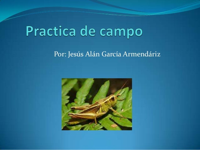 Por: Jesús Alán García Armendáriz