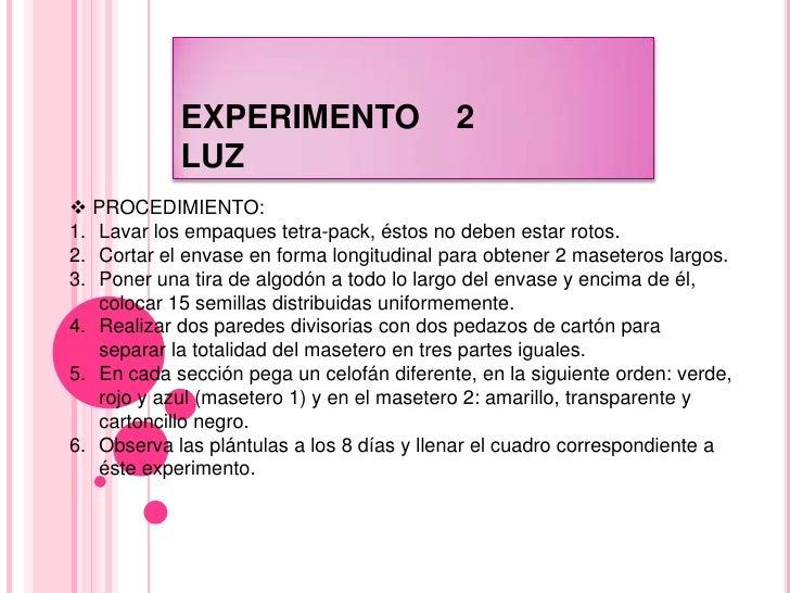 Practica de ecología experimentos 2 y 3