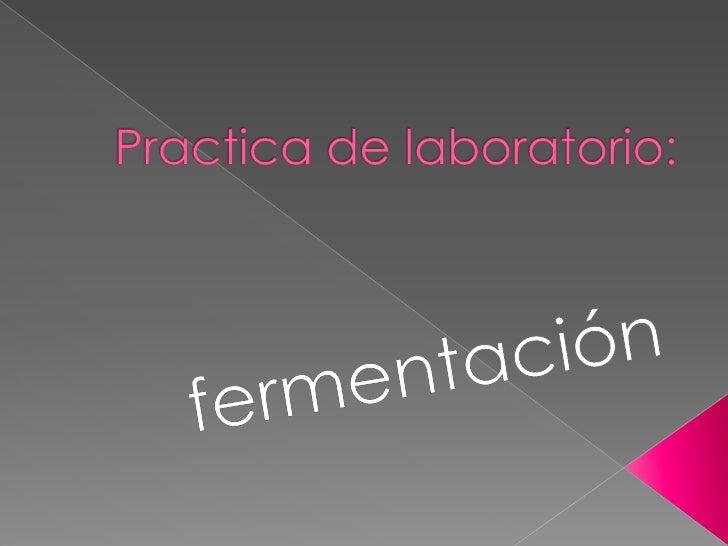 Practica de laboratorio:<br />fermentación<br />