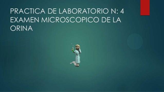 PRACTICA DE LABORATORIO N: 4 EXAMEN MICROSCOPICO DE LA ORINA