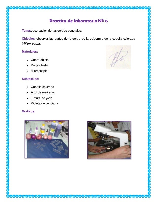 Practica de laboratorio nº 6 iologia