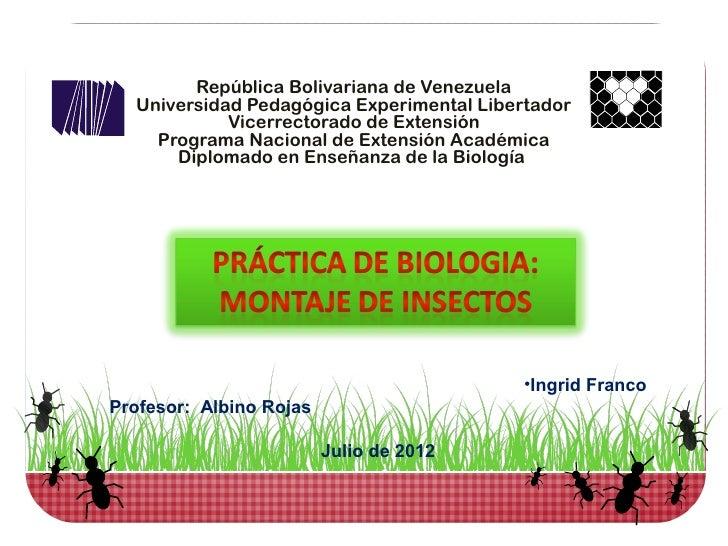 República Bolivariana de Venezuela  Universidad Pedagógica Experimental Libertador            Vicerrectorado de Extensión ...