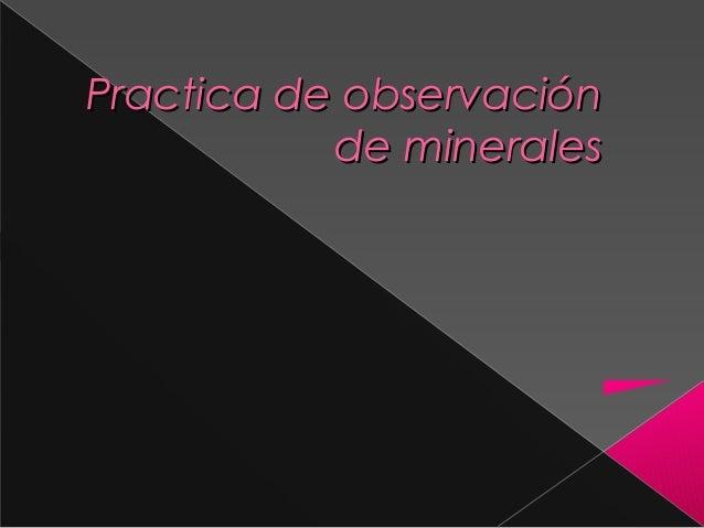 Practica de observación de minerales