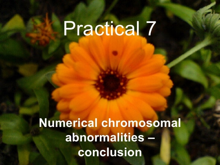 Practical 7 Numerical chromosomal abnormalities – conclusion