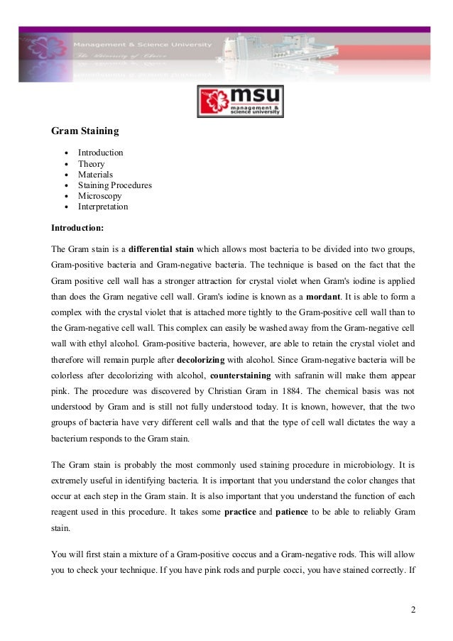 sample history essay chicago style