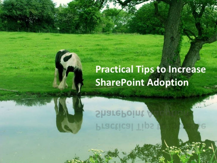 Practical Tips to Increase SharePoint Adoption