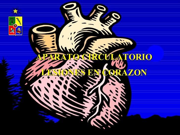 Práctico 2 Patología Circulatorio