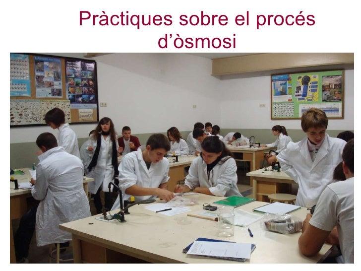 Pràctiques sobre el procés d'òsmosi