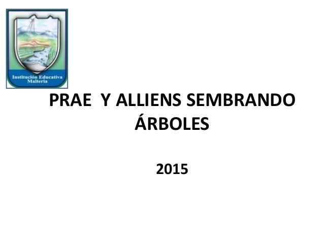 PRAE Y ALLIENS SEMBRANDO ÁRBOLES 2015