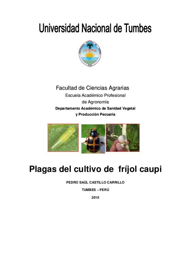 Facultad de Ciencias Agrarias           Escuela Académico Profesional                   de Agronomía      Departamento Aca...