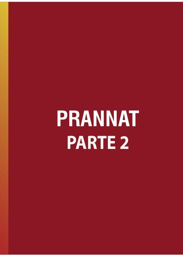 PRANNAT 2