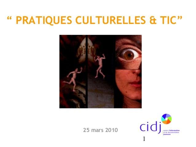 """1 """" PRATIQUES CULTURELLES & TIC"""" 25 mars 2010"""