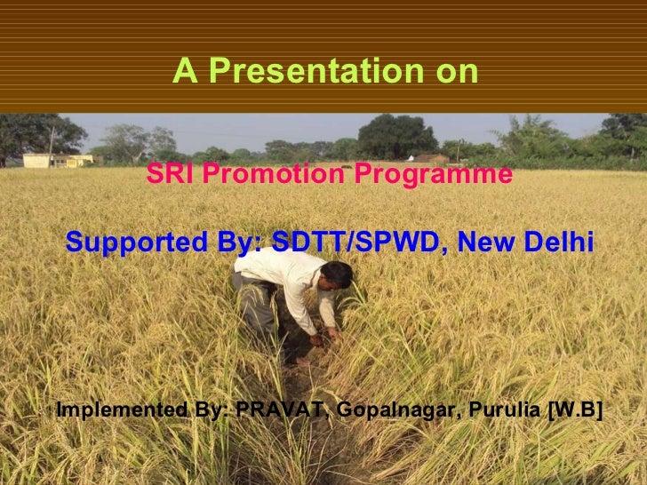 A Presentation on   SRI Promotion Programme Supported By: SDTT/SPWD, New Delhi Implemented By: PRAVAT, Gopalnagar, Purulia...