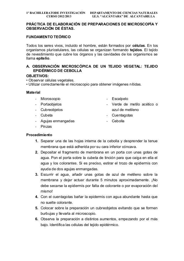 """1º BACHILLERATODE INVESTIGACIÓN       DEPARTAMENTO DE CIENCIAS NATURALES           CURSO 2012/2013             I.E.S. """"ALC..."""