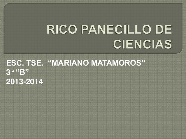 """ESC. TSE. """"MARIANO MATAMOROS"""" 3° """"B"""" 2013-2014"""