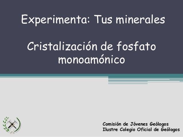 Práctica de cristalización de fosfato monoamónico