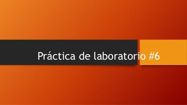 Práctica de laboratorio #6