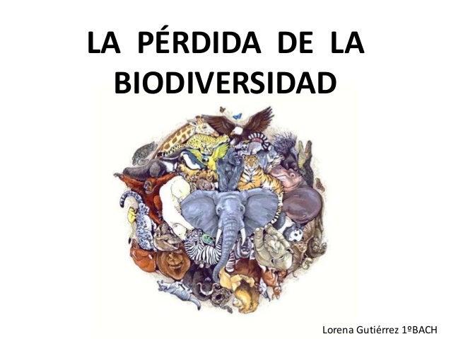 LA PÉRDIDA DE LA BIODIVERSIDAD Lorena Gutiérrez 1ºBACH