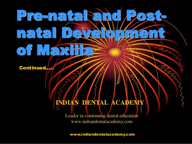 Pre natal and post-natal development of maxilla part 2/certified fixed orthodontic courses by Indian dental academy