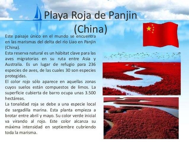 La Playa Roja de Panjin Lugares-exticos-en-el-planeta-tierra-8-638
