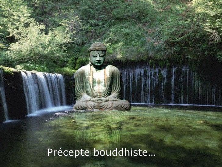 Précepte bouddhiste…
