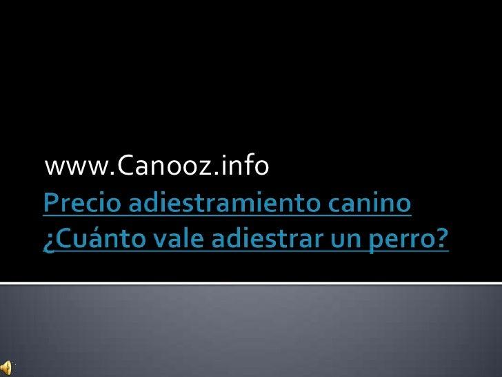 Precio adiestramiento canino ¿Cuánto vale adiestrar un perro?<br />www.Canooz.info<br />