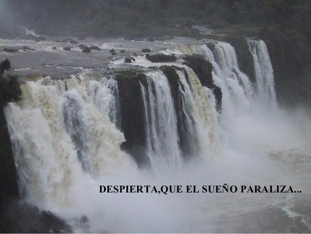 DESPIERTA,QUE EL SUEÑO PARALIZA...
