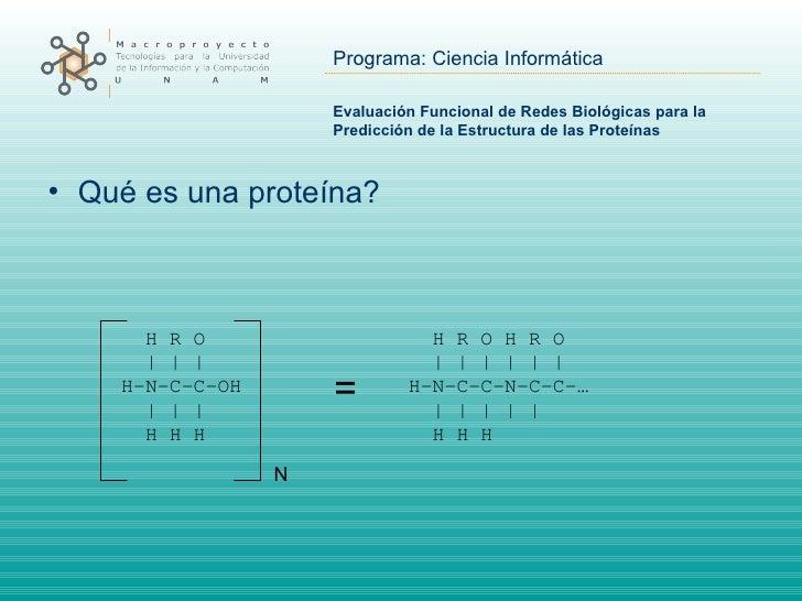 Evaluación Funcional de Redes Biológicas para la Predicción de la Estructura de las Proteínas <ul><li>Qué es una proteína?...