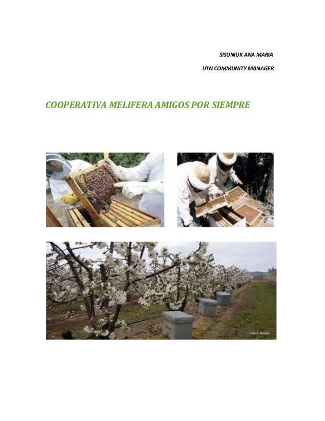 SISUNIUK ANA MARIA UTN COMMUNITY MANAGER COOPERATIVA MELIFERA AMIGOS POR SIEMPRE