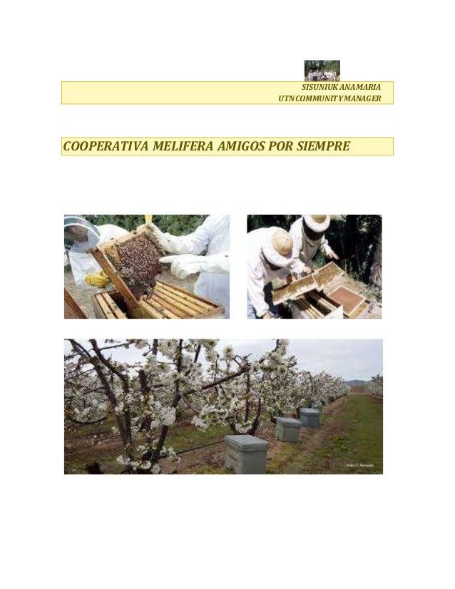 SISUNIUKANAMARIA UTNCOMMUNITY MANAGER COOPERATIVA MELIFERA AMIGOS POR SIEMPRE