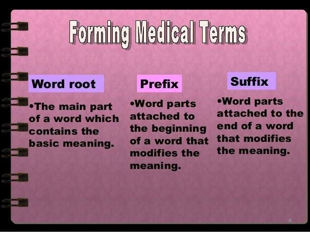 medical prefixes and suffixes pdf