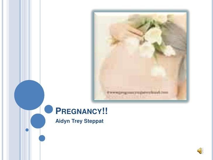 Pregnancy!!<br />Aidyn Trey Steppat<br />