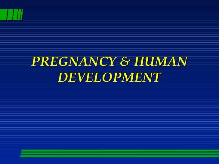 Pregnancy and human_development