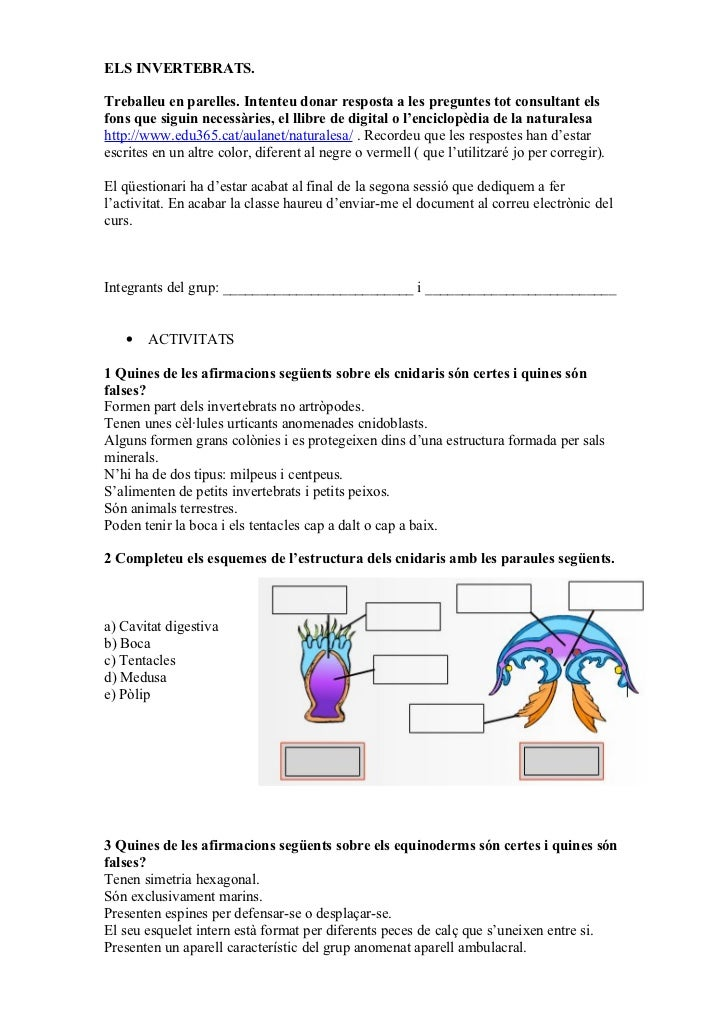 Preguntes invertebrats